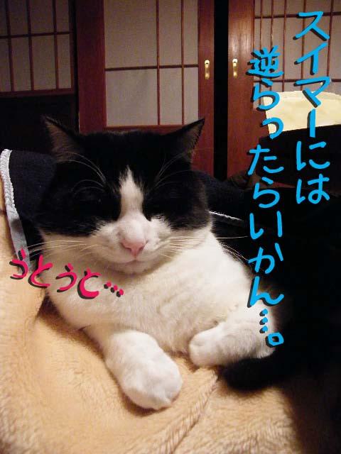 DSCF1396.jpg
