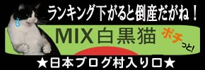 ランキング緑.jpg